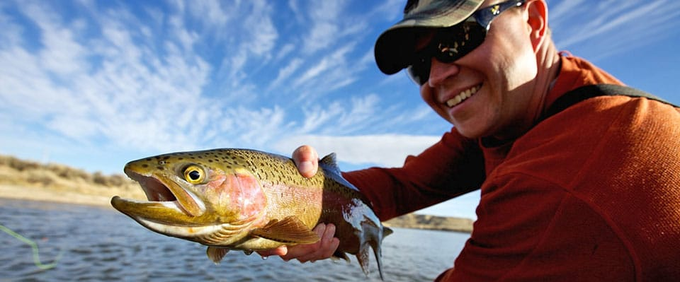 Landed-Trout-In-The-Spring